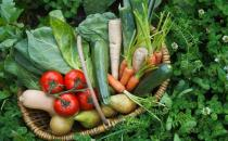 蔬果不应只是餐桌上的配角 每天吃足量蔬果有助防慢病