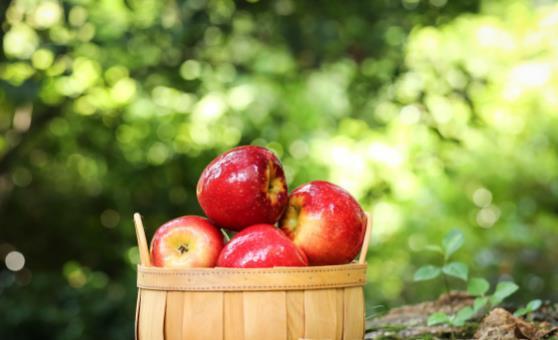 买苹果别只看颜色 认准三点保证个个好吃口感清脆