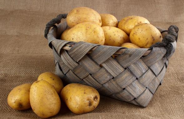 冬天要多吃哪些蔬菜?适宜冬季吃的蔬菜及补血食物推荐