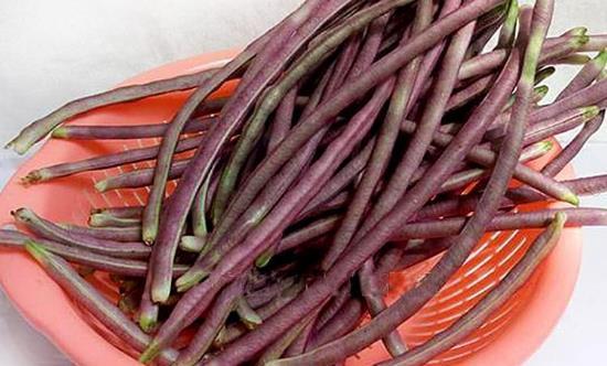 八月豆为人体补充丰富氨基酸 八月豆的食用方法