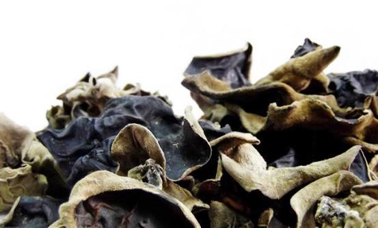 毛木耳与黑木耳的区别 毛木耳的三种美味食用方法