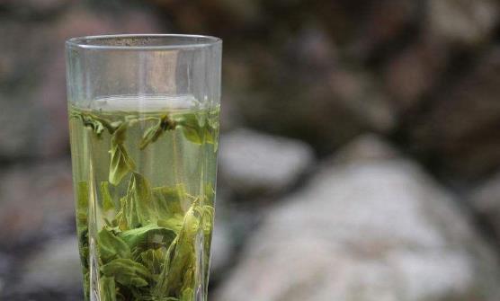 喝绿茶有益健康 四类人不适合喝绿茶