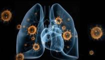 24问新型冠状病毒肺炎乙类传染病 事实到勘谬最全知识点
