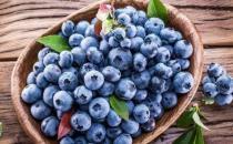 吃蓝莓的各种利与弊 新鲜蓝莓的10种美味吃法