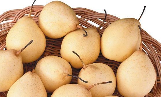 年轻的女性保养卵巢 保养卵巢需要吃的十种食物
