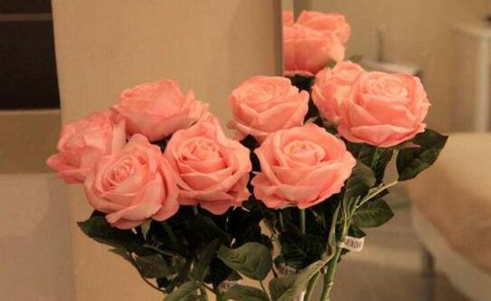 想要玫瑰花的保鲜期长一些
