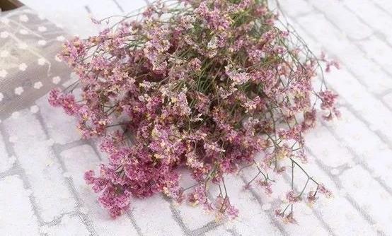 如何让鲜花长开不败?
