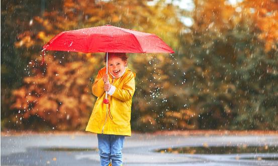 让雨伞长寿从科学保养开始