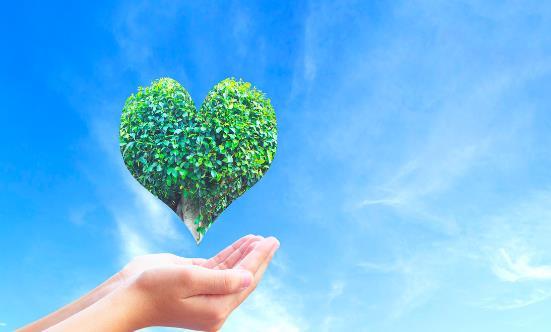 低碳生活方式有哪些 养成低碳生活习惯符合时代潮流