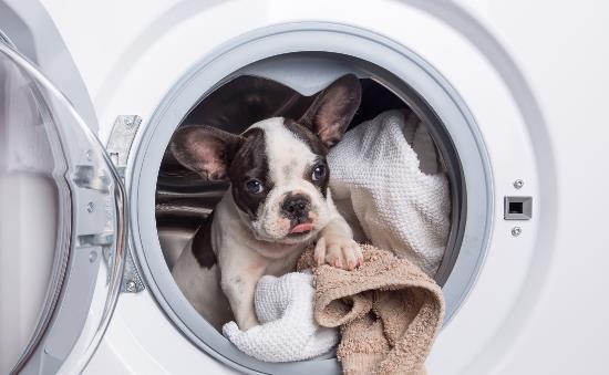 教你家电菜鸟变高手 如何正确挑选适合的洗衣机