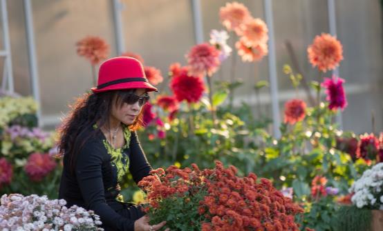踏青赏花正当时 赏花惹过敏六招防治过敏