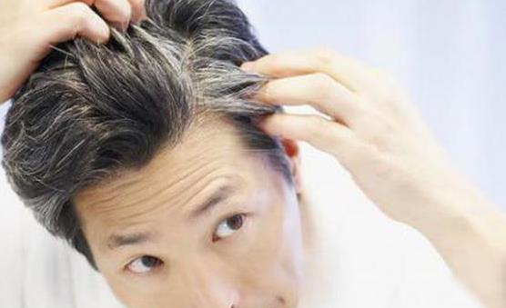 白头发让人苦恼 百合银耳饮能有效黑发润发
