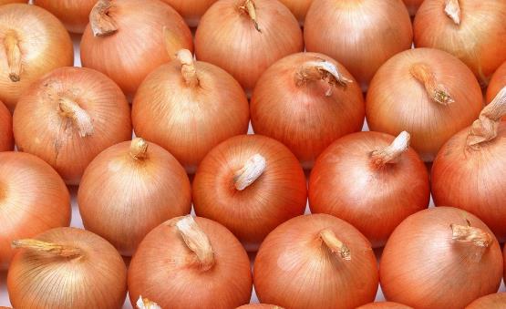 洋葱中的营养丰富 四种洋葱的家常做法