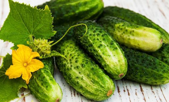 爱上黄瓜的11个理由 几道黄瓜快手菜夏日必备