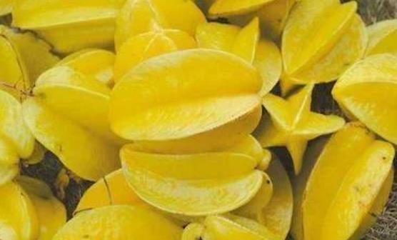 杨桃富含蛋白质和维生素。8吃杨桃的禁忌